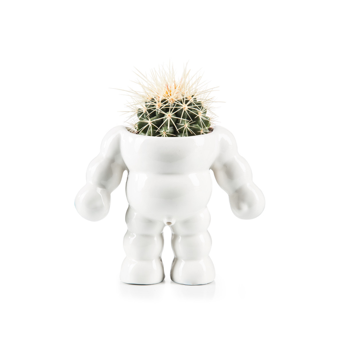 Blumentopf Dickerchen