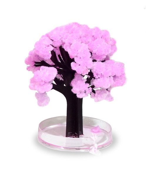 Taianomainen Sakura-puu