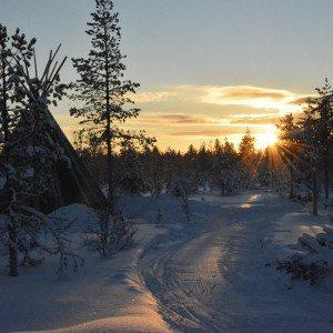 Huskysafari 8 km, Rovaniemi