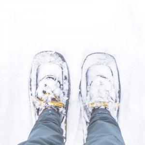 Opastettu lumikenkävaellus, Saariselkä